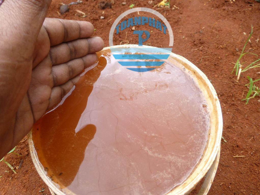 Nước bị nhiễm phèn